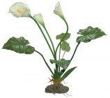 Искусственное растение, Калла Лилия белая, 60см