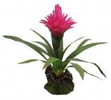 Искусственное растение, Бромелия пурпурная, 30см