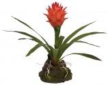 Искусственное растение, Бромелия Гузмания Ред, 35см