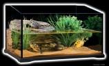 Террариум стеклянный для черепах Turtle Terrarium, 60х45х35 см