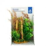 Растение пластиковое PRIME Ротала зеленая 25см