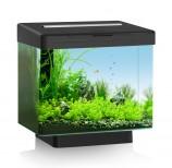 Аквариум JUWEL Вио 40 LED черный 40х26хh35см + цоколь 5 см