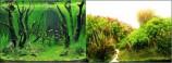 Фон двухсторонний 50см. Коряги с растениями / Растительные холмы