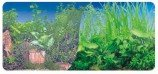 Фон двухсторонний 60см. Растительный нимфея (синий)