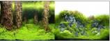 Фон двухсторонний 60см. Затопленный лес / Камни с растениями