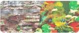Фон двухсторонний 60см. Камни скалистая стена/ Морской кораллы