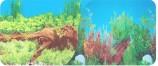 Фон двухсторон 60см. Раст с корягой (син) / Раст с коряг и камн (син)
