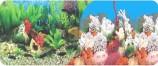 Фон двухсторонний 40см. Растительный пресн. / Белые кораллы
