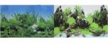 Двухсторонний Растительный/Скалы с растениями 30х60см