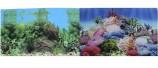 Двухсторонний Коралловый рай/Подводный пейзаж 30х60см