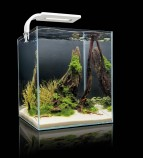 Aquael SHRIMP SET SMARTPLANT ll 20