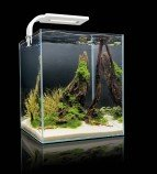 Aquael SHRIMP SET SMARTPLANT ll 10