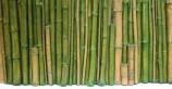 Фон рельефный Бамбук 78х38см желтый