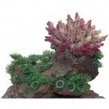 Композиция из кораллов  15х12.5х12.5см SH9609B