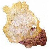 Коралл ARITIFICIAL LIVE CORAL L L340 x W230 x H460мм