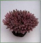 Коралл пластиковый коричневый 7,5x6,5x3,6см MA114PU