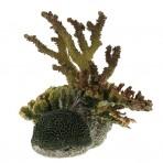 Коралл пластиковый 360 x 250 x 300мм