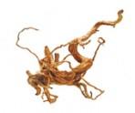 Коряга SPIDER ROOT (саванная) 50-80см